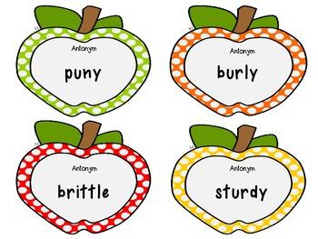 Synonym Antonym Matching Card Game