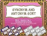 Synonym Antonym Word Sort Game