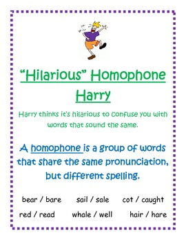 Synonym, Antonym, and Homophone Posters