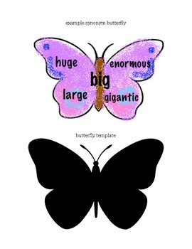 Synonym Butterflies