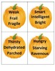 Thanksgiving Synonym Pumpkin Puzzle
