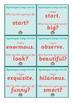 Synonym Loop Cards - Literacy Warm Up Game