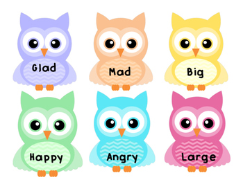 Synonym Matching Owls