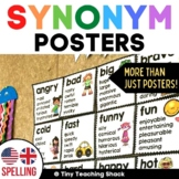 Synonym Posters -USA and UK/Australian spelling