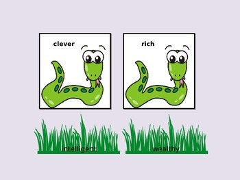 Synonym Snakes