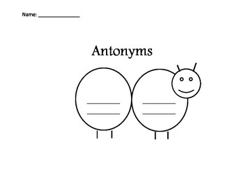 Synonym Spiders and Antonym Ants