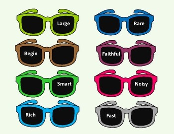 Synonym Sunglasses
