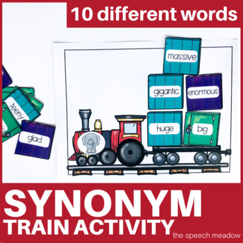 Synonym Train Receptive Language Activity