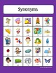Synonyms: Games, Bingo and Task cards