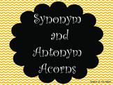 Synonym and Antonym Acorns