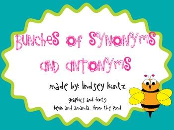 Synonym and Antonym Flowers Craftivity