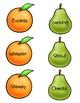 Synonym and Antonym Match