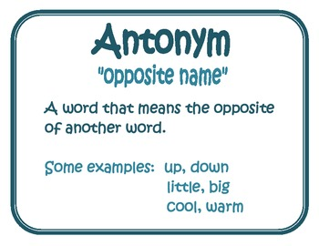Synonym and Antonym Mini Poster Pack