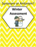 Synonym or Antonym? - Winter (Mitten) Assessment