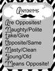Synonym/Antonym Printable