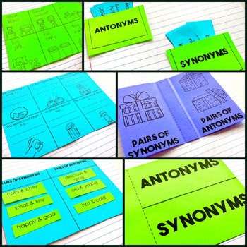 Synonyms & Antonyms - Reading Interactive Notebook