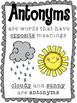 Synonyms & Antonyms Grammar Unit
