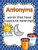 Synonyms & Antonyms Bundle