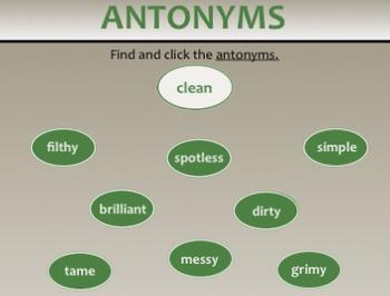 Synonyms, Antonyms, & Homonyms