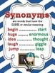Synonyms, Antonyms, & Homophones POSTERS: Chevron Theme