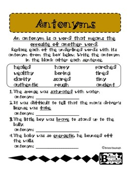 Synonyms & Antonyms Practice Pack