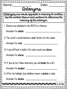 Synonyms, Antonyms, and Homographs