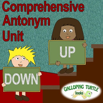 Synonyms, Antonyms and Homonyms - 3 Unit Bundle