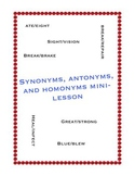 Synonyms, Antonyms, and Homonyms Mini-Lesson