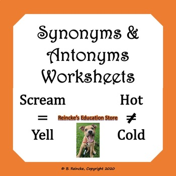 Synonyms and Antonyms Worksheets (10 total)