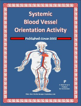 Systemic Blood Vessel Orientation Activity for the Circulatory System