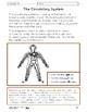 Systems in the Body Lesson Plans Grade 5