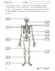Systems in the Body Lesson Plans Grade 8