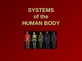 Systems of the Human Body PowerPoint