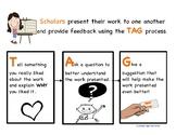 TAG Feedback Process