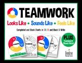 TEAMWORK Looks Like, Sounds Like, Feels Like Chart / Completed & Blank *Color&BW