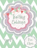 Teacher Evaluation Evidence Binder - Charlotte Danielson Model - Mint Chevron