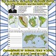 TEST: Inner Earth, Plate Tectonics, and the Rock Cycle