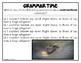 LANGUAGE / GRAMMAR  SPIRAL REVIEW { TEST PREP }