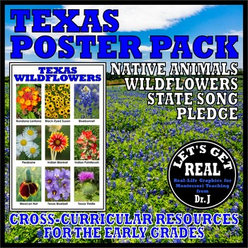 TEXAS POSTER PACK