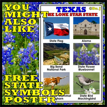 TEXAS STATE SYMBOLS MATCHING CARDS