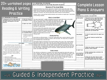 NONFICTION TEXT STRUCTURE READING /WRITING: POWERPOINT, NOTES, WORKSHEETS & TEST