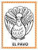 THANKSGIVING TURKEY-EL PAVO- Color the feathers of the tur
