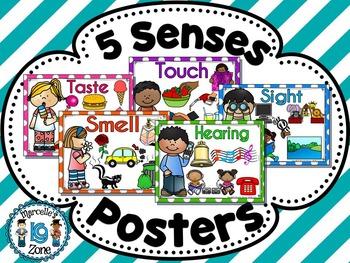 THE FIVE SENSES- POSTERS- VOCABULARY VISUALS
