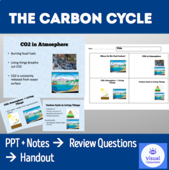THE CARBON CYCLE – PowerPoint + Review Questions + Handout