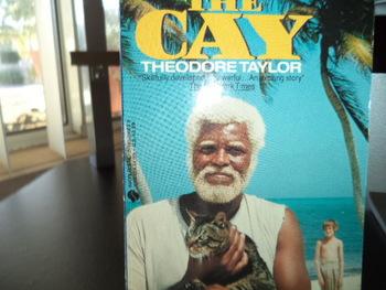 The Cay ISBN 0-380-01003-8