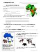 THE ELEPHANT'S TALE by Lauren St. John - Novel Study