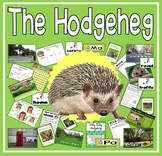 THE HODGEHEG STORY TEACHING RESOURCES EYFS KS1-2 HEDGEHOG ROAD SAFETY
