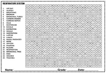 THE HUMAN BODY PARTS AND SYSTEMS WORD SEARCH AND WORD SORT