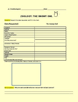 THE SNOWY OWL: A HOMEWORK/ SCIENCE CENTER ZOOLOGY ACTIVITY