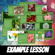 Life Science Slideshows: the ULTIMATE Biology Life Science